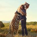 Animals Wild Life