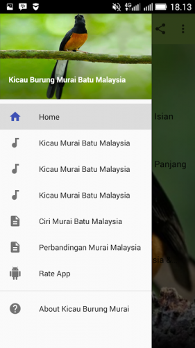 Kicau Burung Murai Batu Malaysia 1 1 Telecharger Apk Android Aptoide