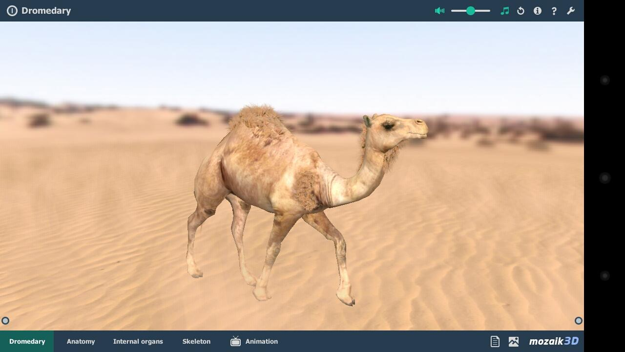 mozaik3D app screenshot 1