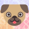 dog expert math training icon