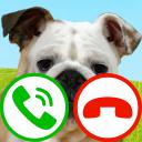 fake call dog game