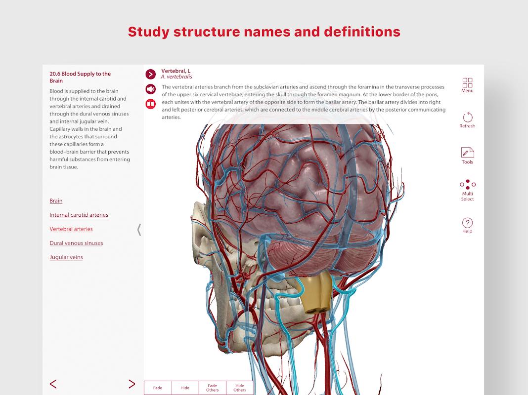 Anatomy & Physiology screenshot 2