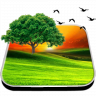 Beauteous Nature Livewallpaper Icon