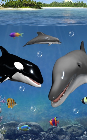 Dolphins and orcas wallpaper 10427 download apk for android aptoide dolphins and orcas wallpaper screenshot 6 altavistaventures Images