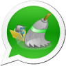 Icône Cleaner For Whatsapp Pro