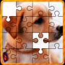 Animal Jigsaw Puzzles DayCare