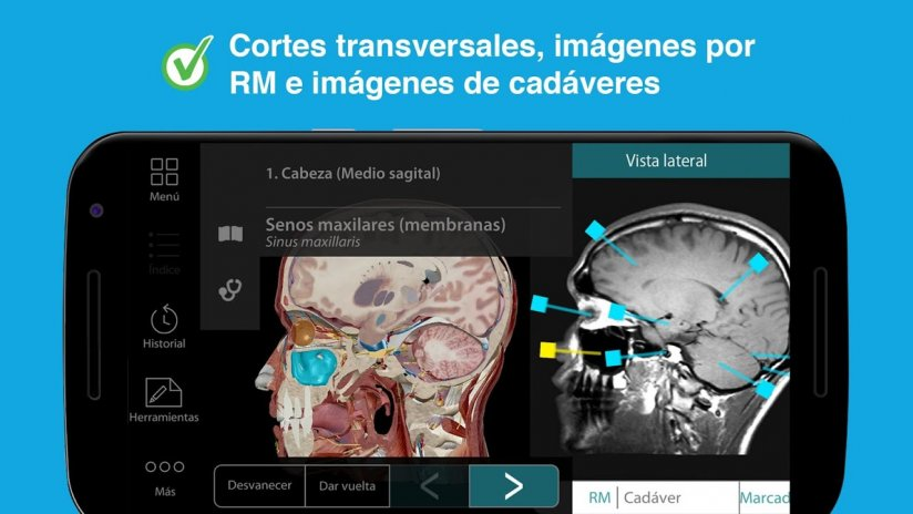 Atlas de anatomía humana 2017 2017.1.39 Descargar APK para Android ...