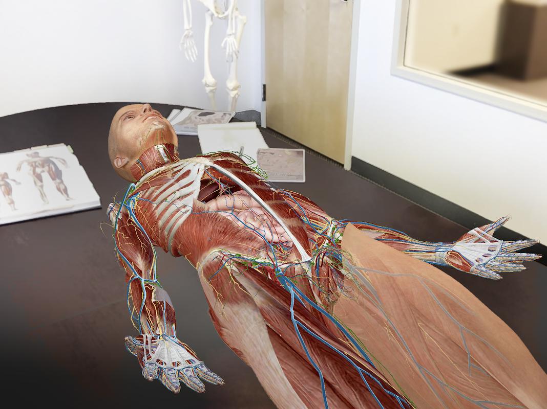 Human Anatomy Atlas 2020:Complete 3D Human Body screenshot 2