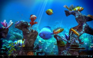 Tropical Ocean 3D LWP Screen