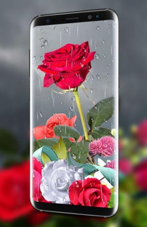 Rose Live Wallpaper 2019 With Waterdrops 1 9 Download Apk For