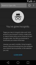 Chrome Browser - Google Screenshot