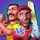All Star Cricket