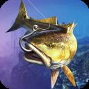 Wild Shark Fish Hunting game