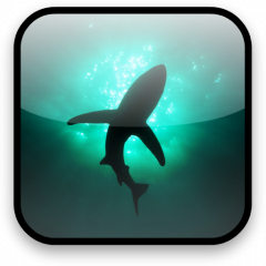 Shark Video Wallpaper Free 12 Download Apk For Android Aptoide