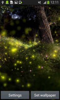 Fireflies Live Wallpapers screenshot 1