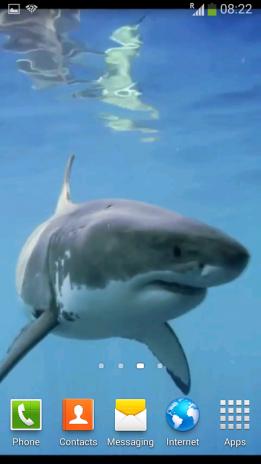 White Shark Video Wallpapers 11 Descargar Apk Para Android