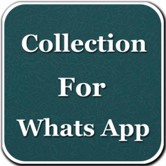 Share Image For Whatsapp 12 Download Apk For Android Aptoide