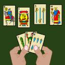 Cards scoba 15