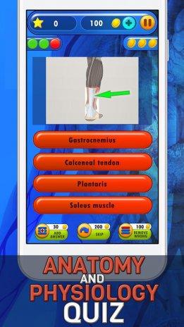 Anatomia Y Fisiologia Quiz 1.1 Descargar APK para Android - Aptoide