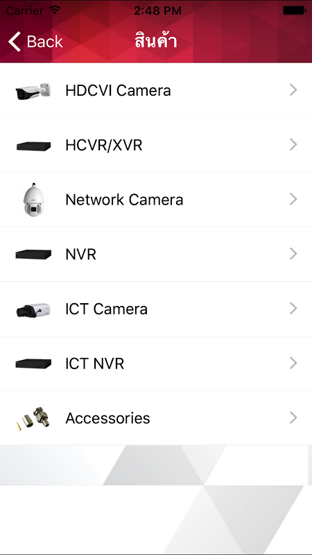 Dahua CCTV screenshot 2
