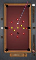Pool Billiards Pro Screenshot