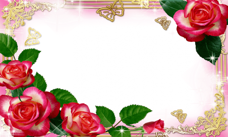 Flower Photo Frames HD 2016 1.0 Download APK for Android - Aptoide