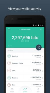 Copay Bitcoin Wallet screenshot 1