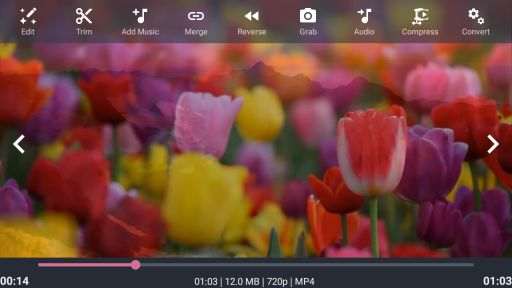 AndroVid - Video Editor screenshot 10
