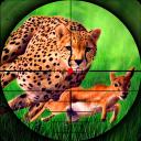 Cheetah Hunter 2016