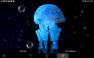 Mondo Mare Sfondi Animati 2 0 Scarica Apk Per Android Aptoide