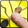 cat toys anthunt cat games icon