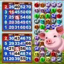 Video Bingo Little Farm 2
