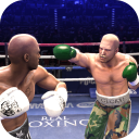 Real Punch Boxing 2019 - Star of Boxing