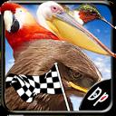 Bird Race 3D