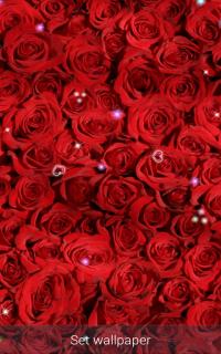 Wallpaper Animasi Bunga Mawar 20 Unduh Apk Untuk Android