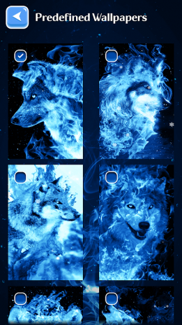 Ice Fire Wolf Wallpapers And Backgrounds Screenshot 3