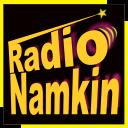 Best Hindi Songs Music App: Radio Namkin (HD)