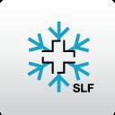 White Risk - App Valanghe SLF