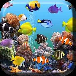 Acquario sfondi animati scarica apk per android aptoide for Sfondi animati pesci