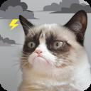 Grumpy Cat Meteo