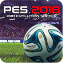 Pro Evolution Soccer-For Guide PES