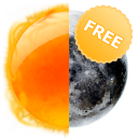 Day and Night (Free)