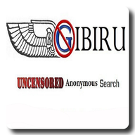 Gibiru Anonymous Search Engine