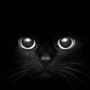 Black Cat Eyes. С Launcher Theme
