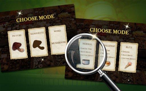 Hidden Objects : Market Mania screenshot 2
