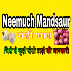 Neemuch Mandi bhav 1 1 0 Download APK for Android - Aptoide