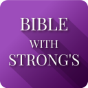 Bible Concordance & Strongs Offline