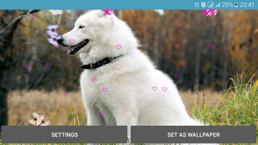 Dog Live Wallpaper Screenshot 6