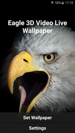 Eagle 3d Live Video Wallpaper Screenshot 6