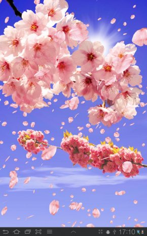 Sakura Free Live Wallpaper 1 63 Download Apk For Android Aptoide